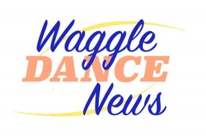 Waggle Dance News